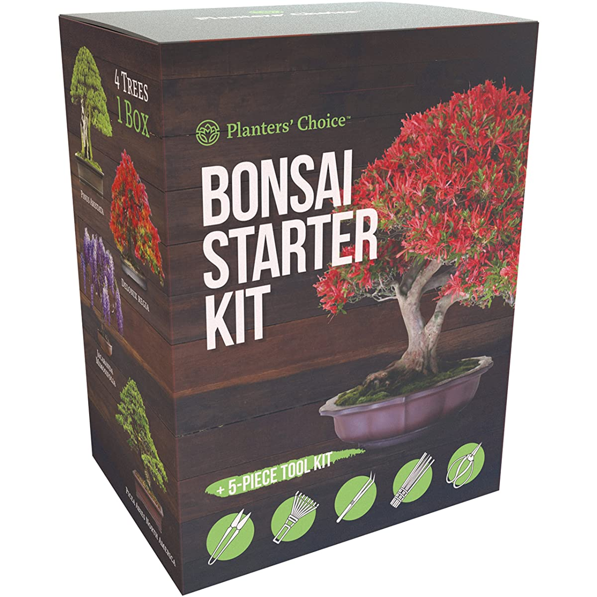 Planters Choice Bonsai Starter Kit + Tool Kit - The Complete Kit to Easily Grow 4 Bonsai Trees from Seed with Comprehensive Guide & Bamboo Plant Markers - Unique Gift Idea