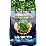 Pennington Smart Seed Perennial Rye Grass Seed, 3 lb