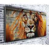 Canvas35 Lion Panoramic Art Print Picture Framed Xxl 55 inch x 24 inch Over 4.5 Wide x 2 Ft High Ready to Hang, Canvas, Multi-Colour,