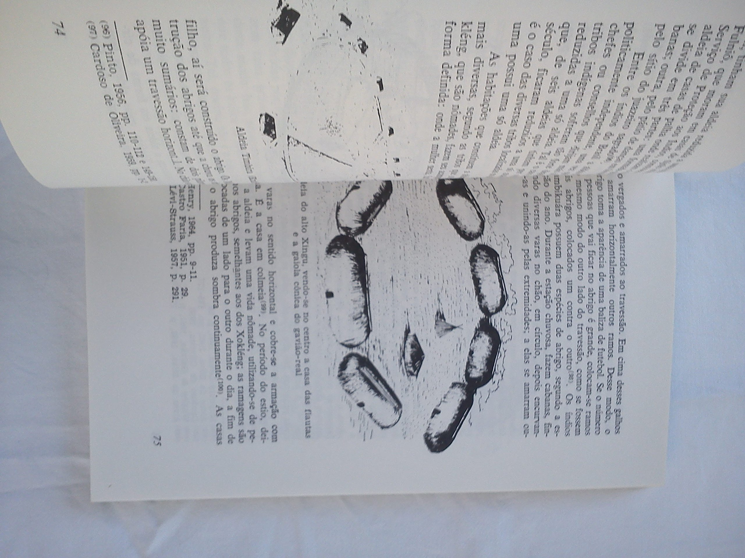 Indios Do Brasil: Amilcar Armando Botelho de Magalhães: 9788527100083: Amazon.com: Books