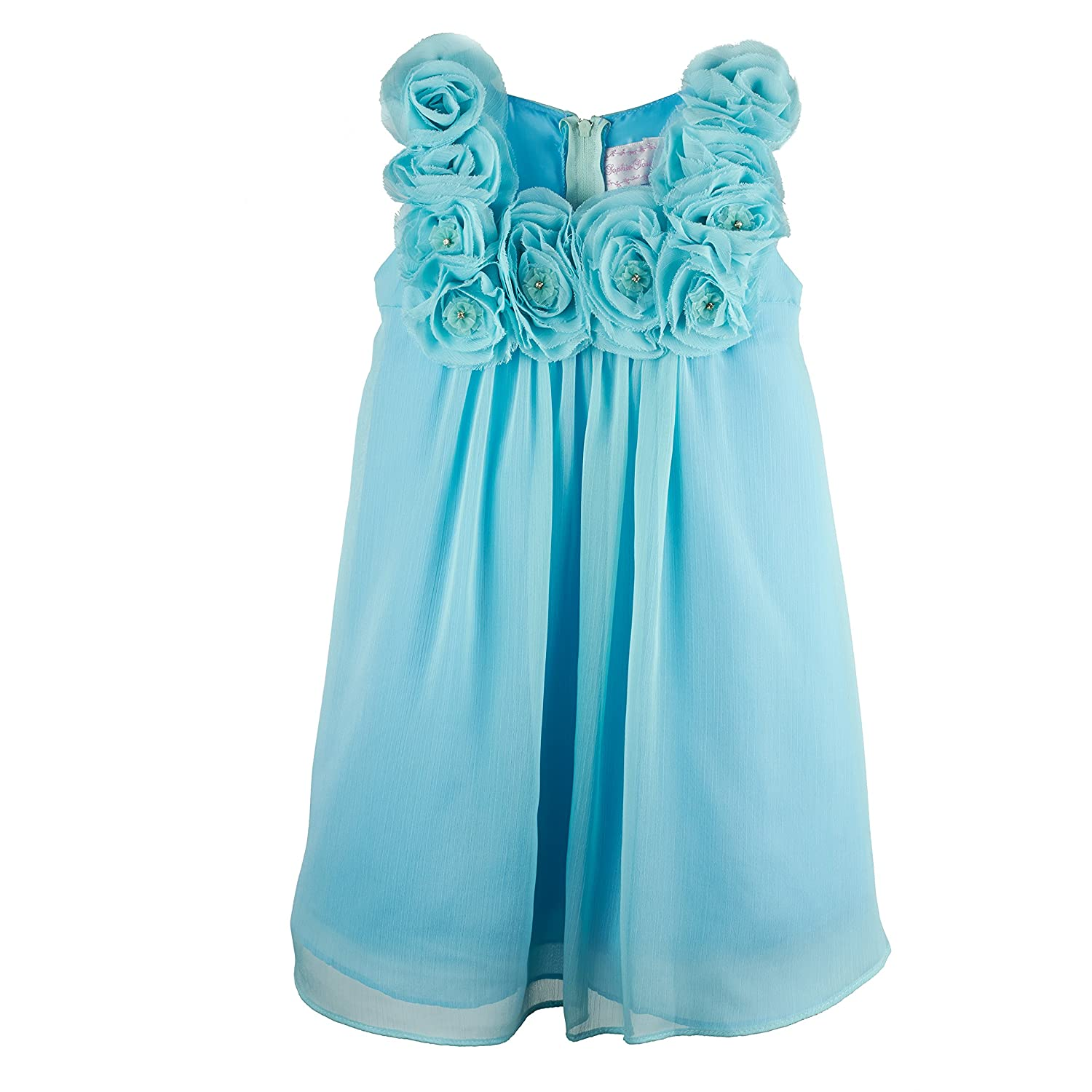 Amazon.com: Sparkle Flower Girl, Pageant or Party Dress in Chiffon ...
