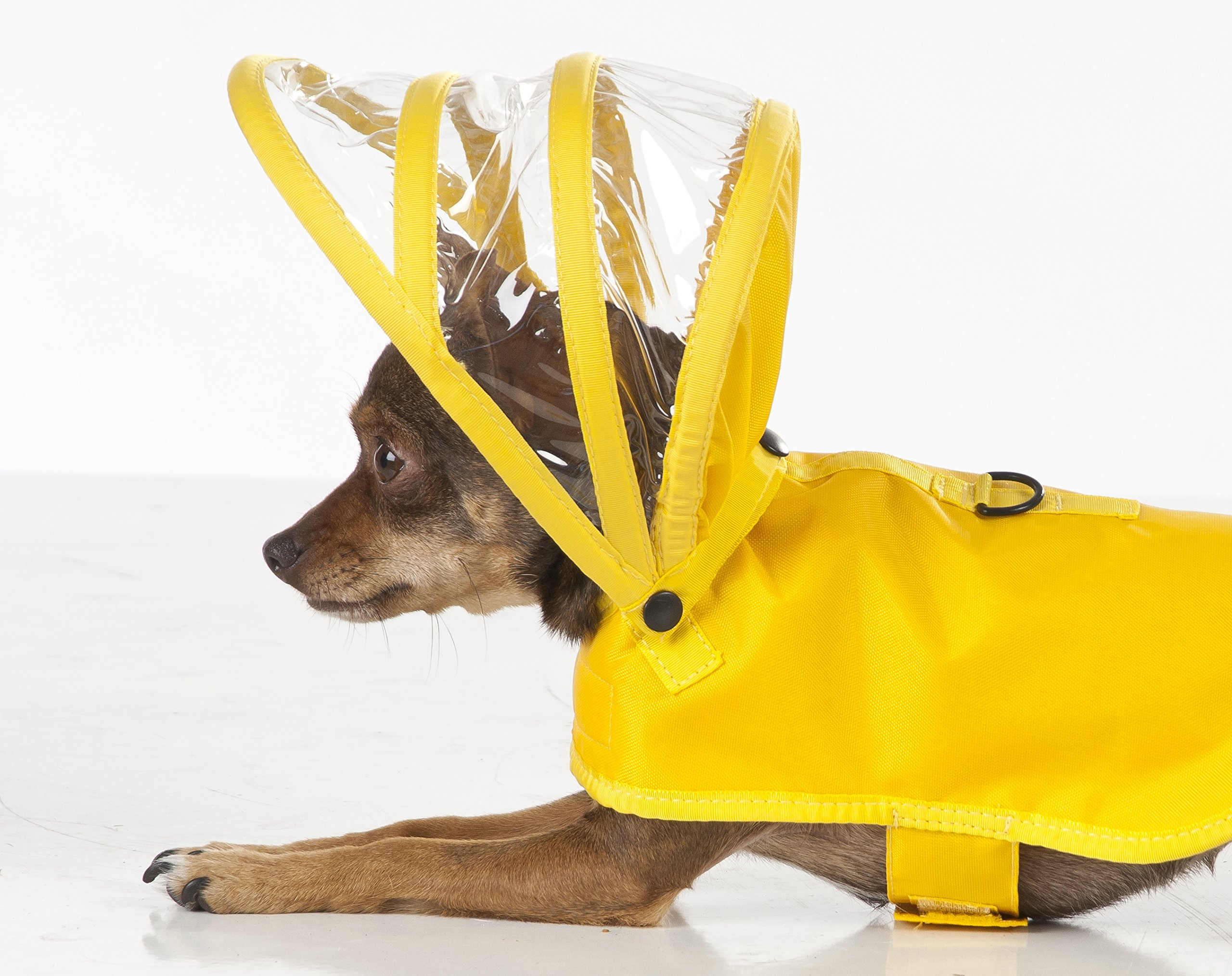 Dog Raincoat Yellow (M) by Push Pushi by Push Pushi (Image #1)