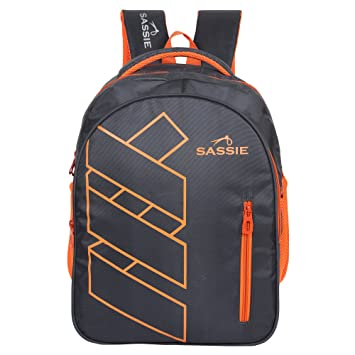 d440cb7d312f Sassie Grey Polyester 41 Ltr School Backpack  Amazon.in  Bags ...