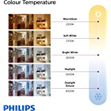 AmazonBasics 100 Watt Equivalent, Daylight, Non-Dimmable, A21 LED Light Bulb | 6-Pack