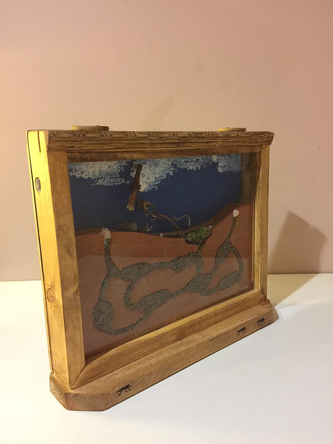 Classic Wooden Ant Farm (Free Ants Included)