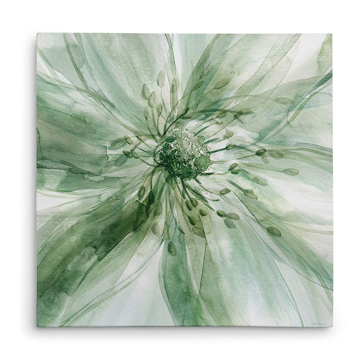 WEXFORD HOME Macro Sage Flower I Gallery Wrapped Canvas Wall Art, 16x16,