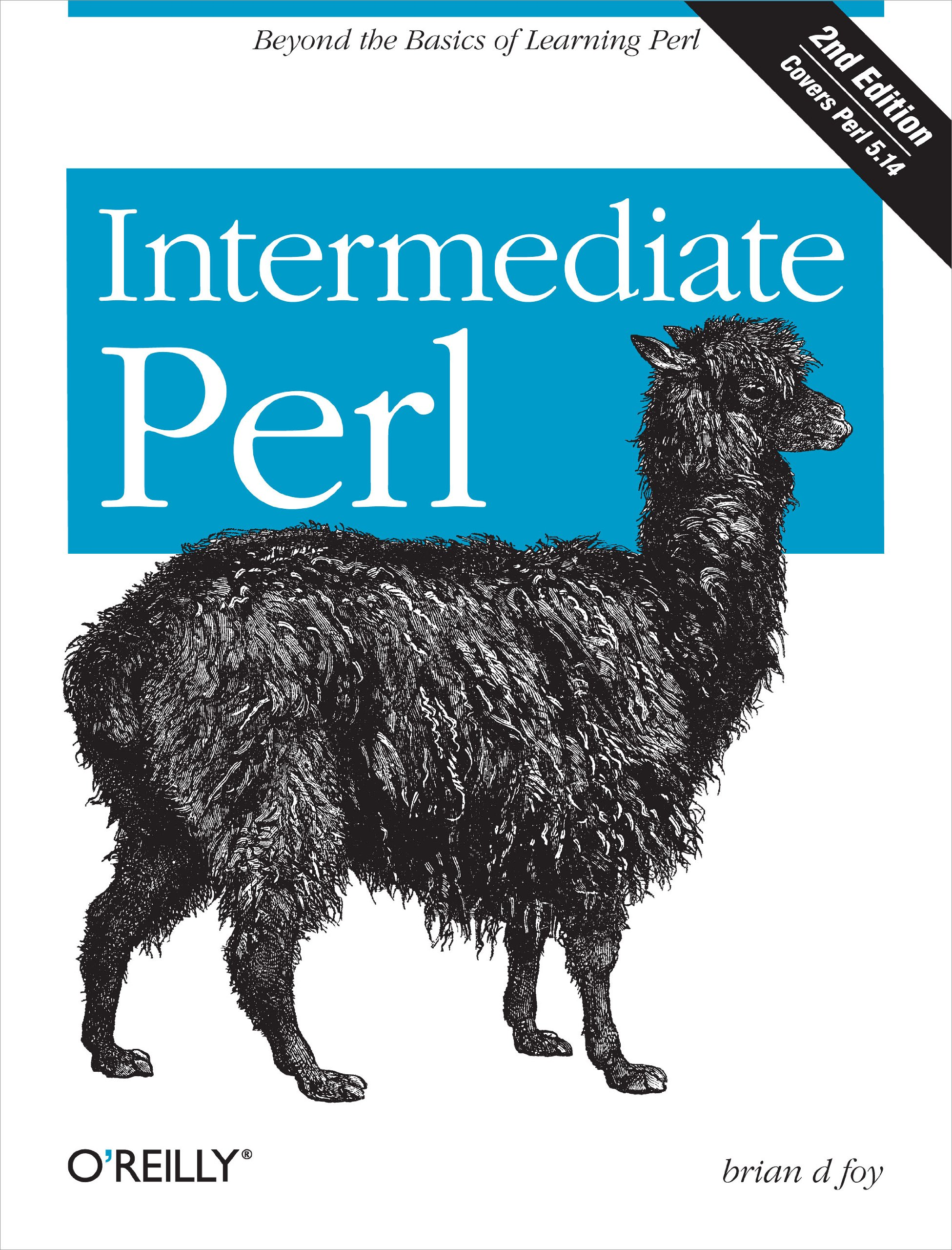 Intermediate Perl  Beyond The Basics Of Learning Perl  English Edition