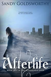 Afterlife (The Afterworld Saga Book 2)