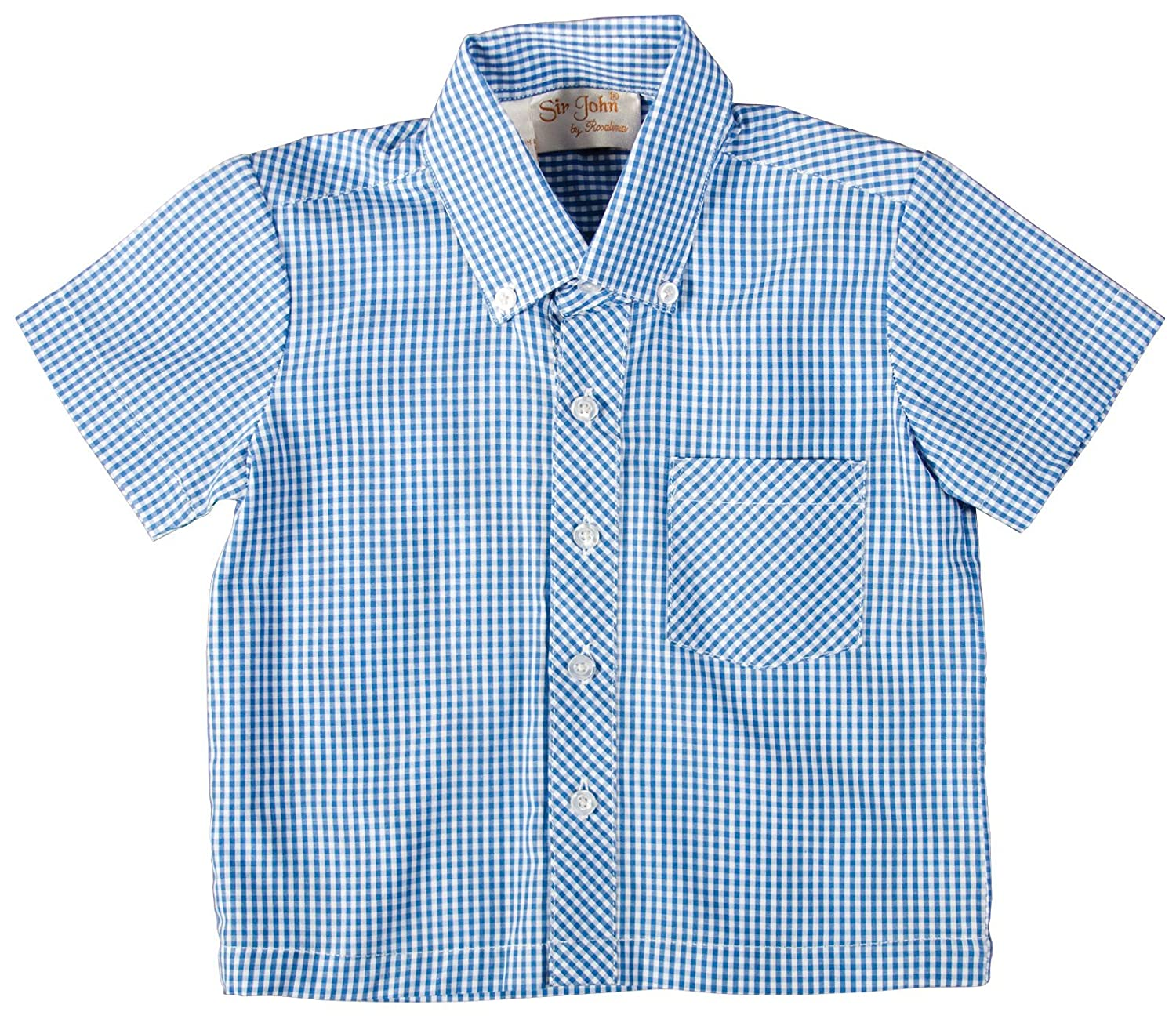 Rosalina Little Boy's Button Down Royal Blue Gingham Polo Shirt