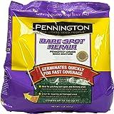 Pennington Bare Spot Lawn Repair Central Grass Seed, 1 lb.