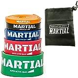 Resistance Band - perfekte Fitnessbänder & Rubber Band für effektives Training - Widerstandsbänder & PowerBand für den ganzen Körper - Expander & Bodytrainer für dein Workout