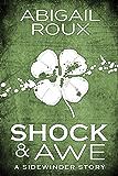 Shock & Awe (Sidewinder Book 1)