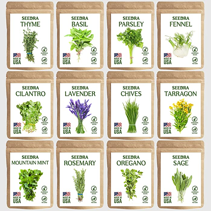 SEEDRA 12 Herb Seeds Variety Pack Indoor and Outdoor Planting - 3500+ Seeds - Non GMO and Heirloom - Basil, Thyme, Lavender, Sage, Parsley, Chives, Rosemary, Tarragon, Oregano, Fennel, Mint, Cilantro