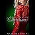 A Bewitching Christmas: Holiday Novella (Under Realm Assassins Book 1)