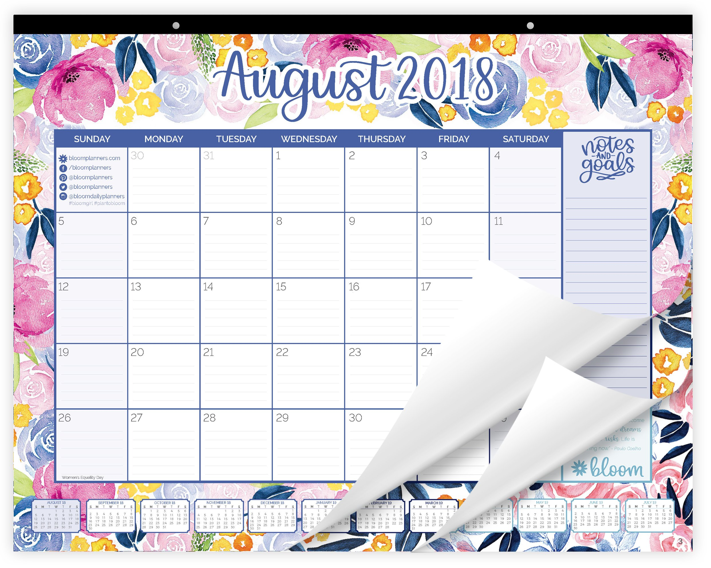 Bloom Daily Planners 2018-2019 Academic Year Desk or Wall Calendar with Vision Board (August 2018 Through July 2019) - 21'' x 16'' - Watercolor Flowers