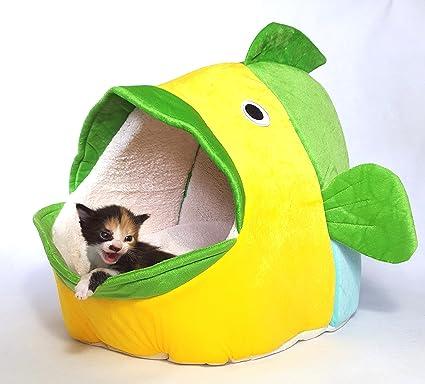 Espacios tus gato/Gatos en este preciosa XL cama antes.