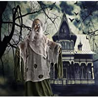 Haunted Hill Farm 5ft Talking Evil Witch Halloween Prop Deals