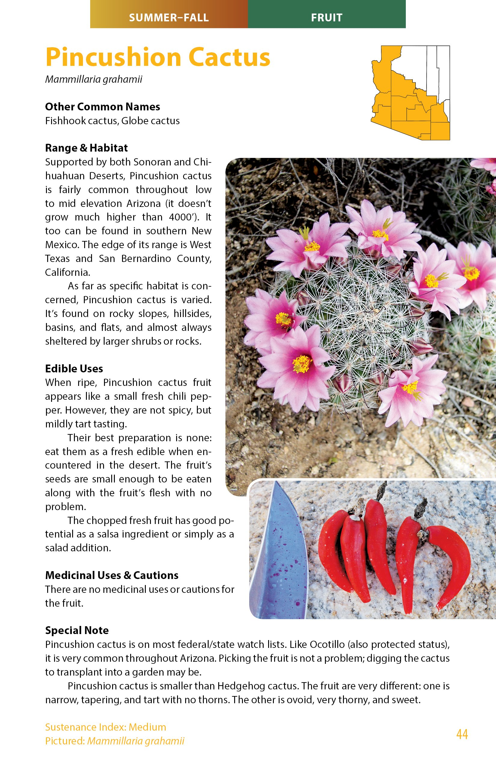 The spice doc edible and medicinal flowers - Sonoran Desert Food Plants Edible Uses For The Desert S Wild Bounty Charles W Kane 9780998287126 Amazon Com Books