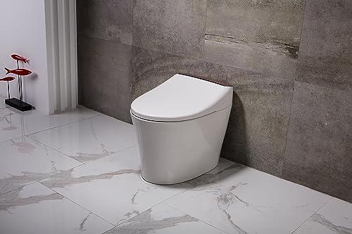 Dyconn Faucet Aphrodite Tankless Toilet