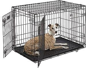Best Dog Crate for Weimaraner