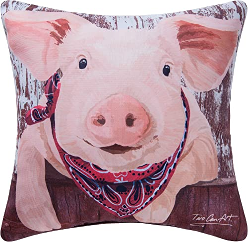 C F Home 18×18 Inches, Pig Pillow