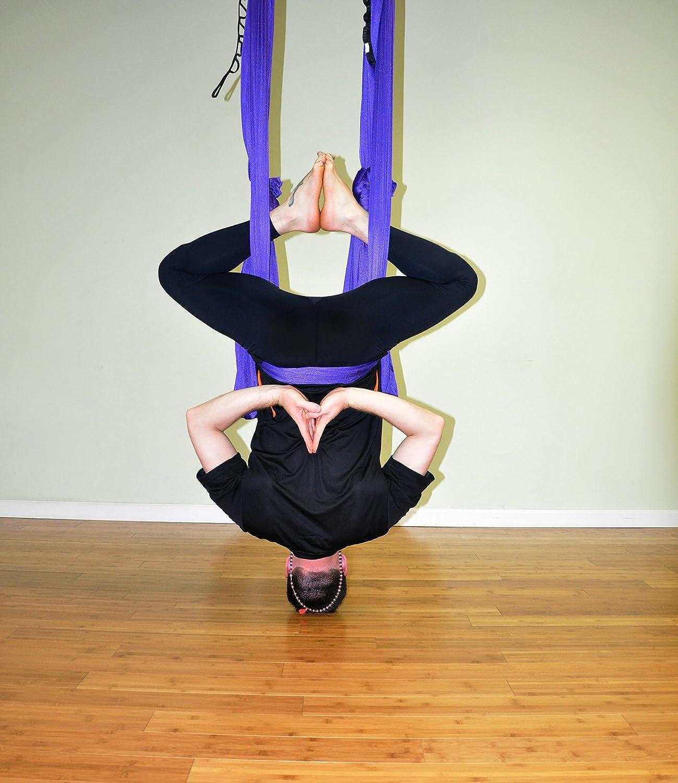 Deluxe Aerial Yoga Hammock Yoga Swing for Trx, Aerial Yoga, Antigravity Purple