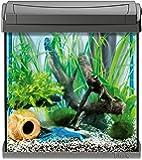 Tetra AquaArt Discovery Line Aquarium-Komplett-Set anthrazit (inklusive Tetra EasyCrystal FilterBox und Aquarienheizer, ideal für die Haltung von Garnelen, Krebse oder tropischen Zierfische), verschiedene Größen
