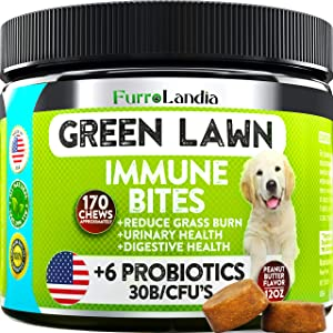 FurroLandia Natural Grass Saver for Dogs - 170 Soft Chews - Dog Pee Lawn Repair Caused by Dog Urine - Grass Saver Rocks - DL-Methionine + Digestive Enzymes - Peanut Butter Flavor