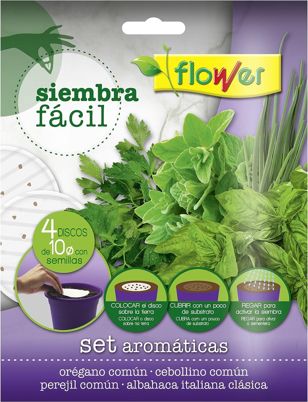 Flower 51167 51167-Siembra fácil aromáticas, No aplica, 19x2x19 cm ...