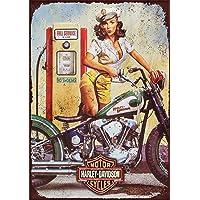 Letrero metálico con diseño retro de Harley Davidson