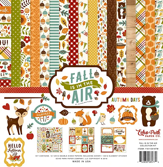green red teal Echo Park Paper Company MFF187031 Fall is in The Air embossing folder black orange tan