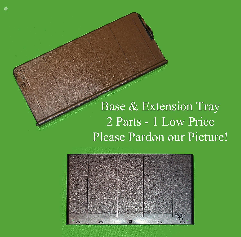 Amazon.com: Epson Paper Base & apoyar la extensión ...