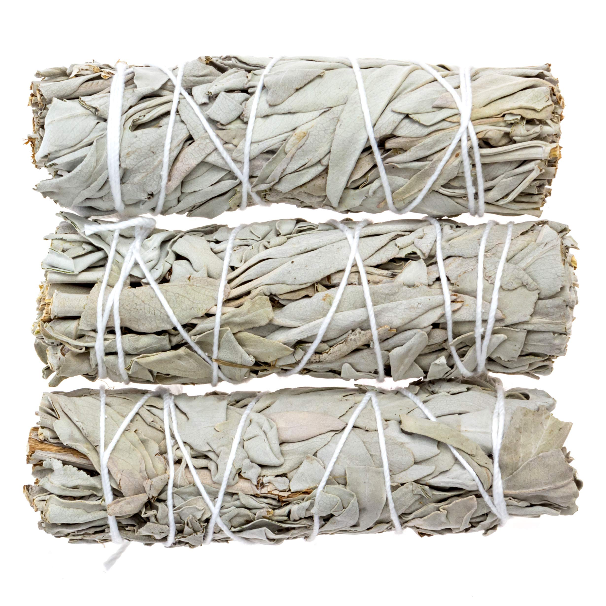Big Lost Goods 3 Pack, Premium White Sage Smudge Sticks, Mini Bundles 4-5'' Long, Organically Grown in California. Use for: smudging, Energy Cleansing, and Meditation by Big Lost Goods (Image #4)