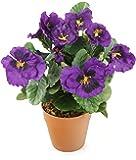 Closer 2 Nature - HBC006PUE, Pianta finta con fiori viola, altezza: ca. 30 cm [Vaso non incluso]