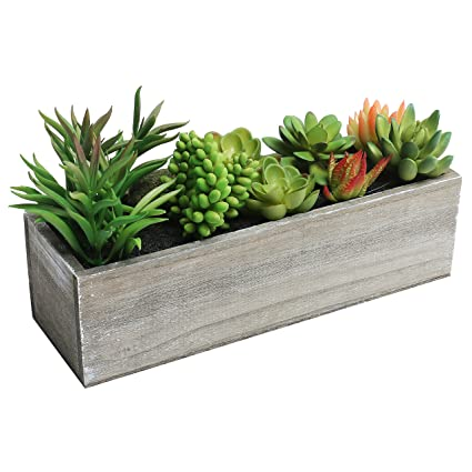 Amazon Com Mygift Artificial Mixed Succulent Plants In Rectangular