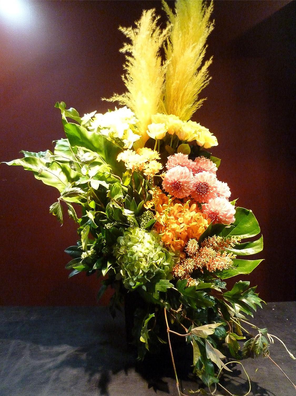 ||| パンパスグラス ||| 珍しい花材 ||| 花屋 ||| B06XW3Y6T2