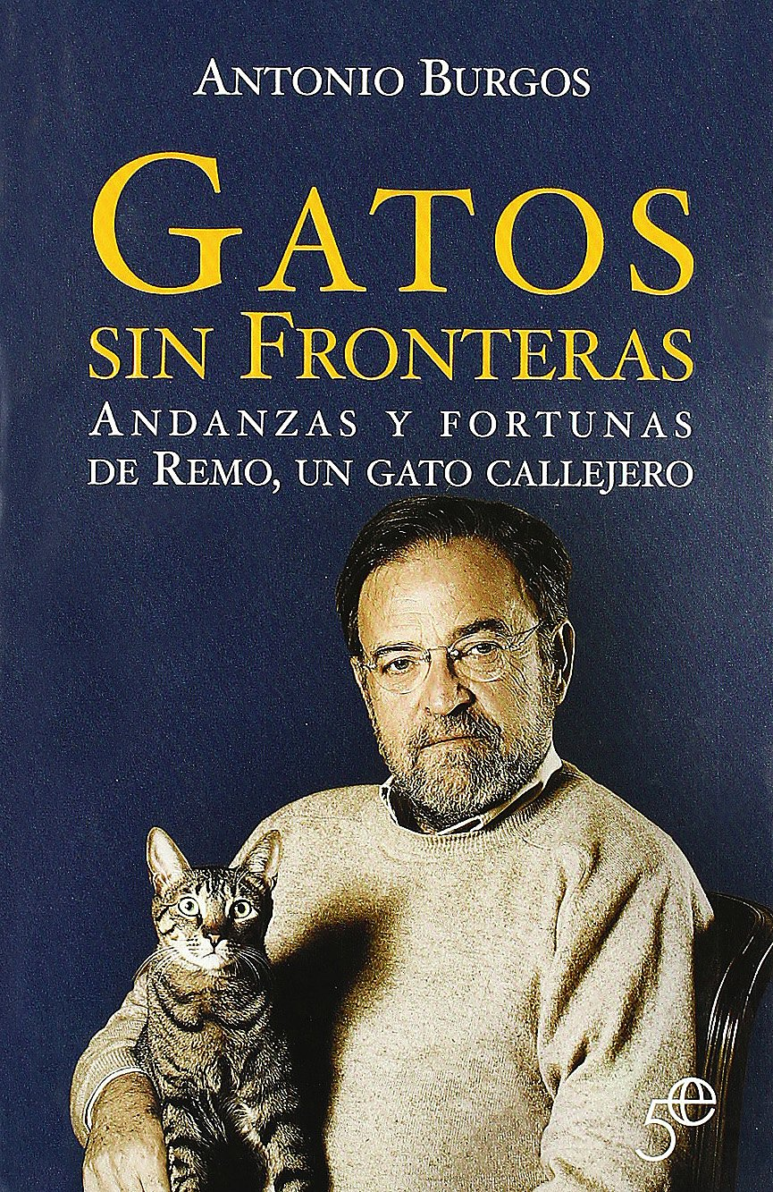 Gatos sin fronteras (Spanish) Paperback – 2006