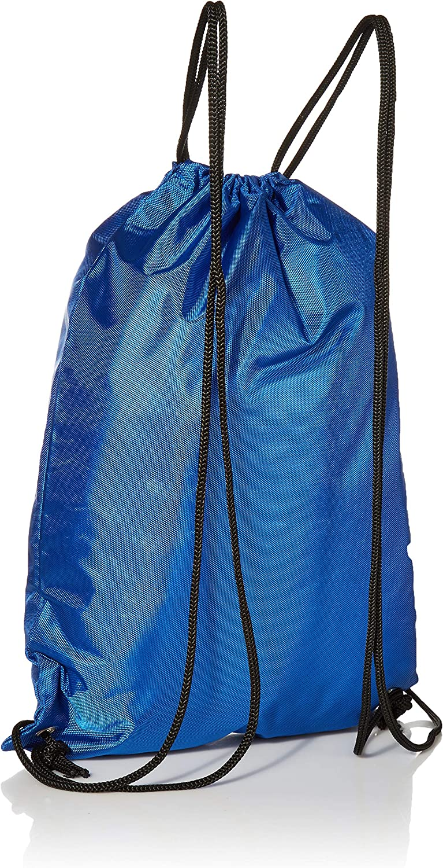 FOCO NFL Unisex 2013 Drawstring Backpack