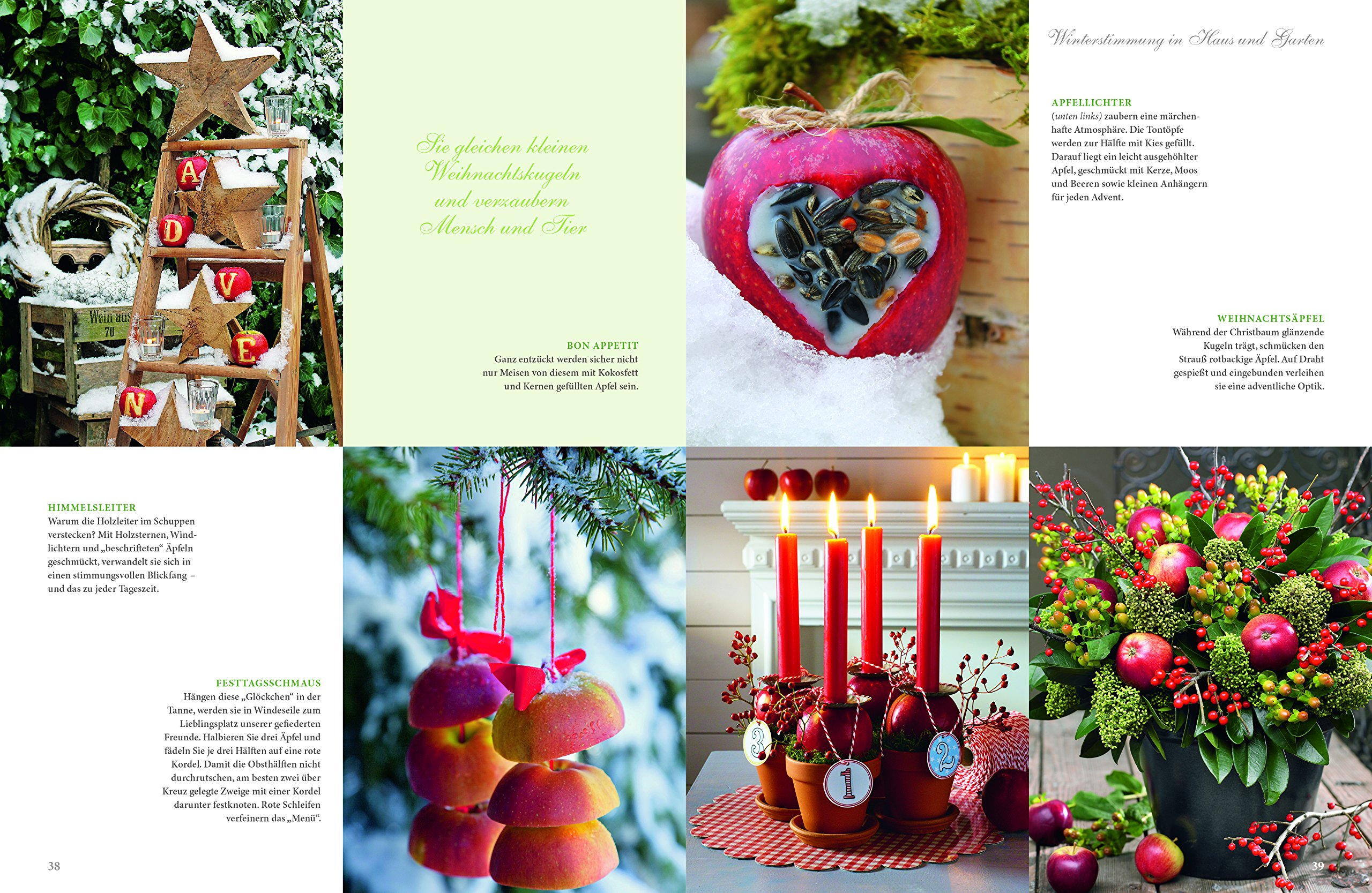 Wintertraum Und Weihnachtszeit: Rezepte Und Ideen Für Die Schönste  Jahreszeit: Amazon.de: Wohnen U0026 Garten: Bücher