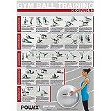 Gymnastikball - Workout Übungsposter DIN A1 Beginner Training Poster
