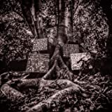 Harmony of Difference [帯・解説付 / 国内仕様輸入盤CD] (YTCD171JP)