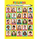Laminated 18x24 Child Feelings Poster