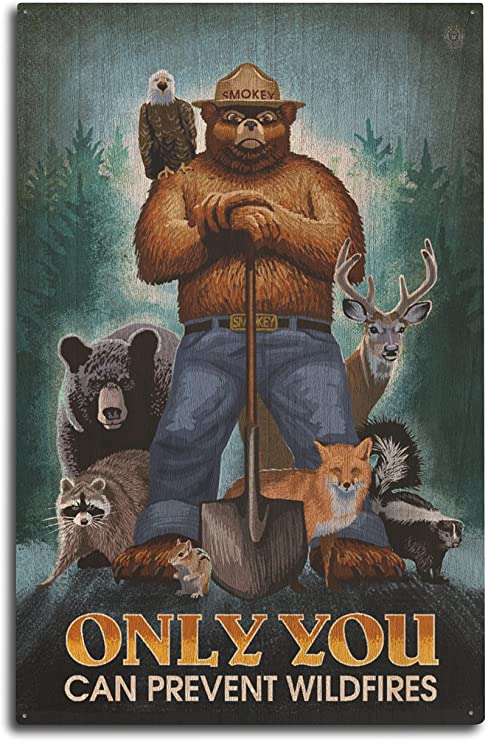 Amazon Com Lantern Press Smokey Bear Only You Can Prevent Wildfires 10x15 Wood Wall Sign Wall Decor Ready To Hang Posters Prints