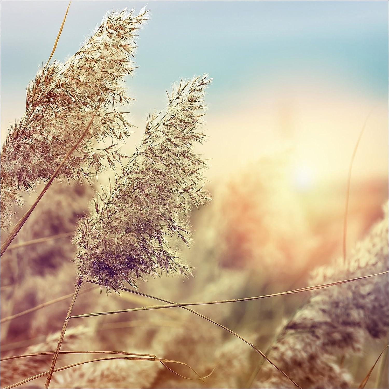 Pro-Art-Bilderpalette gla1275d Wheat in Wind II Glas-Art, bunt, 20 x 20 x 1,3 cm Pro-Art-Bilderpalette (PRPQU)