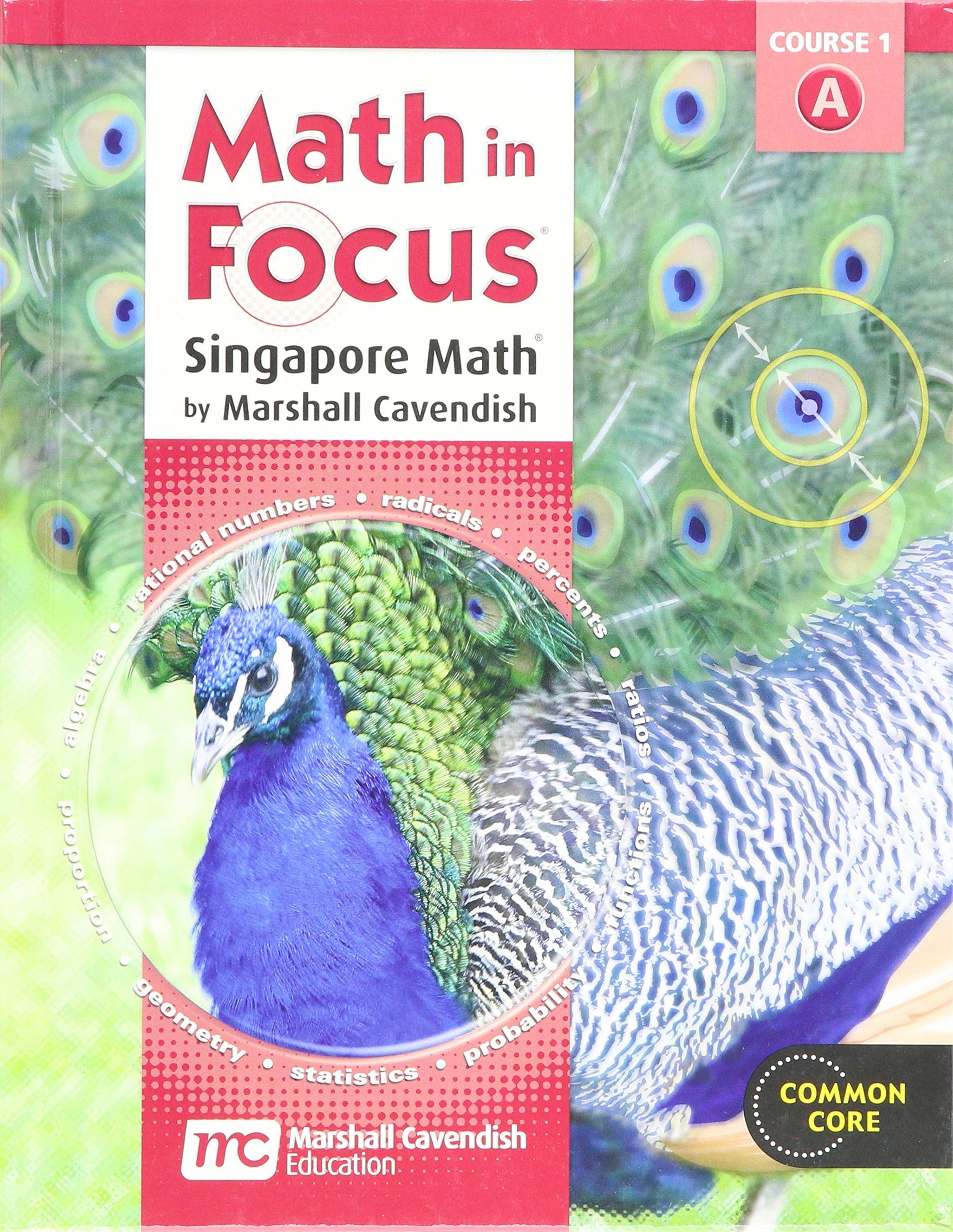 Math in Focus: Singapore Math Student Edition, Grade 6, Volume A