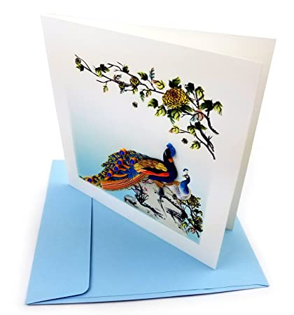 Amazon peacocks quilling greeting card 6x6 with envelope peacocks quilling greeting card 6x6quot with envelope any occasion blank inside m4hsunfo