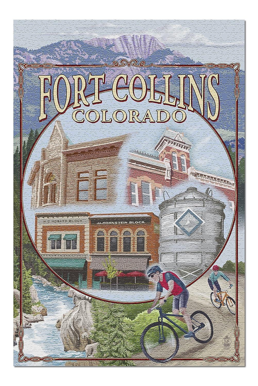 最新 Fort Collins、コロラド – x シーン( ) 20 – x 30プレミアム1000ピースジグソーパズル、アメリカ製。 ) B076PTZB1C, わんのはな:0c7d4a42 --- a0267596.xsph.ru
