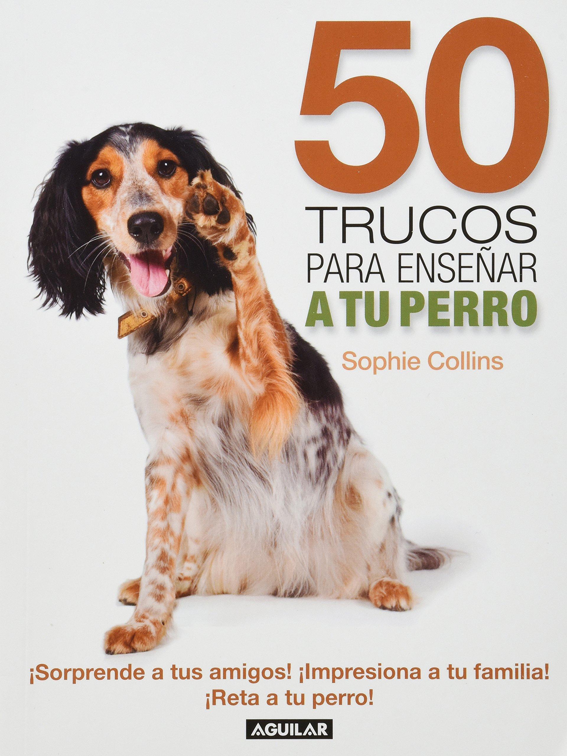50 TRUCOS PARA ENSEÑAR A TU PERRO (Spanish) Paperback