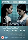 In Bloom [Reino Unido] [DVD]