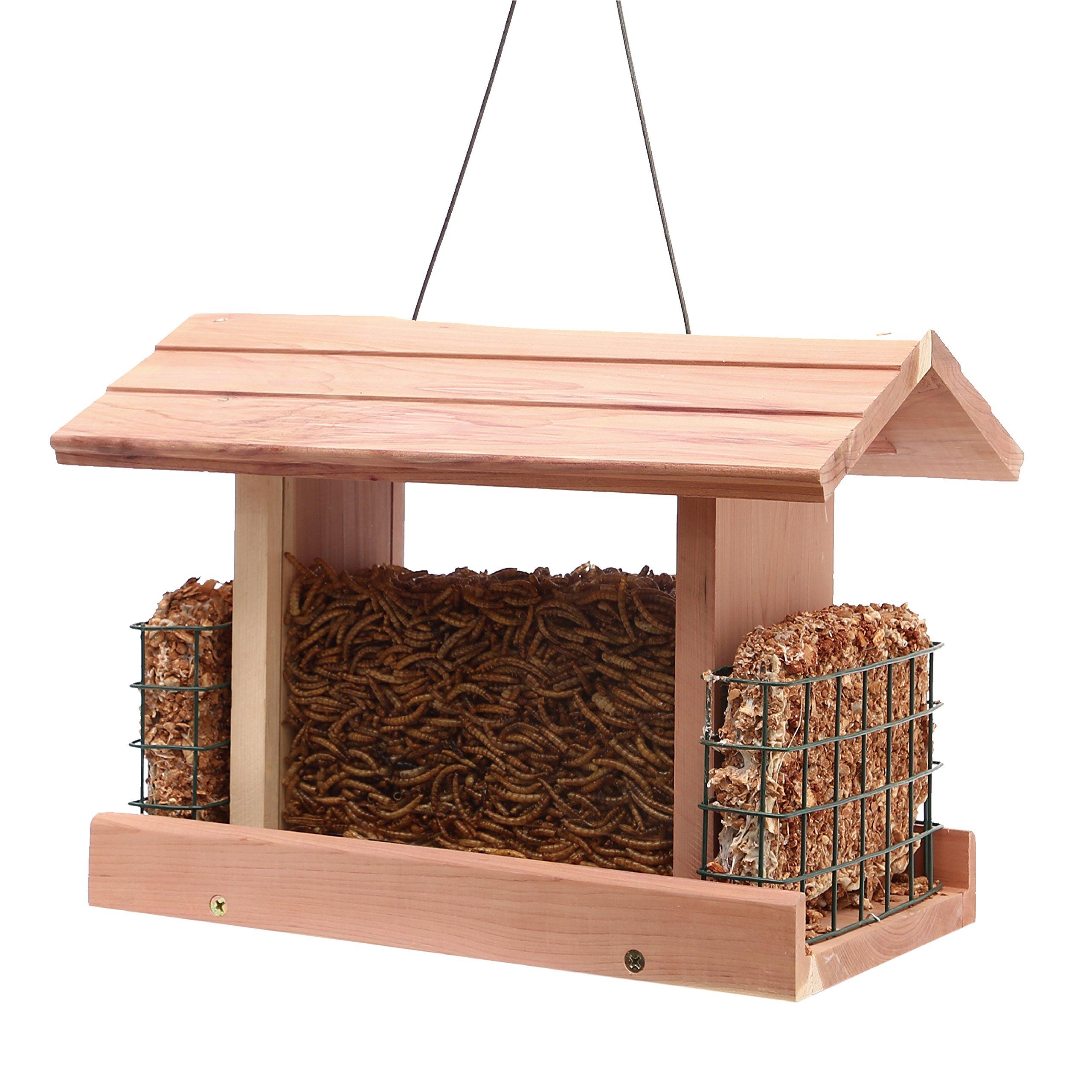 Worth Garden Cedar Wooden Bird Feeder with Double Plastic Window and Metal Mesh